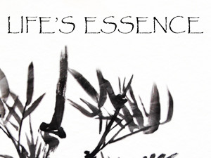 Life's Essence Acupuncture