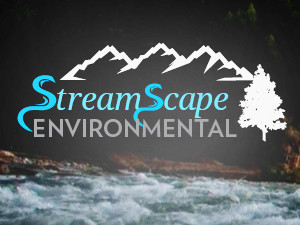 Streamscape Environmental